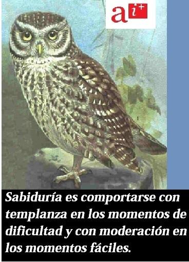 Sabiduría
